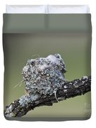 Blue-gray Gnatcatcher Nest Duvet Cover