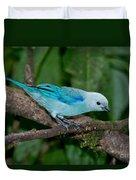 Blue-gray Tanager Duvet Cover