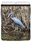 Blue Heron Lacassine Duvet Cover