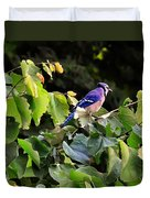 Blue Jay In A Tree Duvet Cover