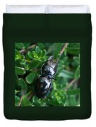 Blue Lined Beetle Duvet Cover