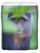 Blue Monkey Cercopithecus Mitis, Lake Duvet Cover