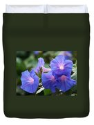 Blue Morning Glory Wildflowers - Convolvulaceae Duvet Cover