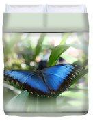 Blue Morpho Butterfly Dsc00575 Duvet Cover