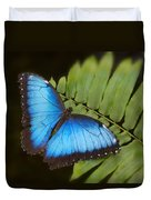 Blue Morpho Butterfly On Fren Dsc00441 Duvet Cover