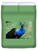 Blue Peafowl Duvet Cover