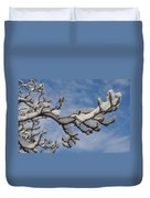 Blue Skies In Winter Duvet Cover
