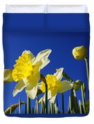 Blue Sky Spring Bright Daffodils Flowers Duvet Cover