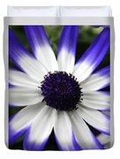 Blue Tipped Osteospermum Duvet Cover