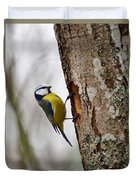 Blue Tit Searching Home Duvet Cover