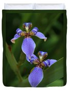 Blue Walking Iris Duvet Cover by Carol Groenen