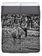 Blue Wildebeest-black And White Duvet Cover