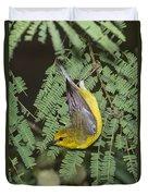 Blue-winged Warbler Duvet Cover