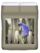 Bluebird On The Fence Duvet Cover