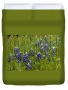 Bluebonnets In The Grass Duvet Cover