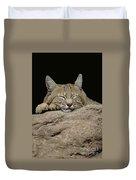 Bobcat, Arizona Duvet Cover