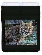 Bobcat Beauty Duvet Cover