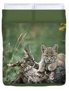Bobcat Kitten Resting On A Log Idaho Duvet Cover