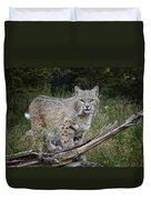 Bobcat On The Prowl Duvet Cover