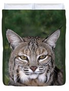 Bobcat Portrait Wildlife Rescue Duvet Cover