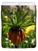 Bold And Showy Orange Crown Imperial Flower  Duvet Cover