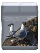 Bonaparts Gull's Duvet Cover