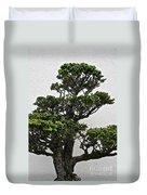Bonsai Pine Duvet Cover