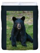 Boo-boo The Little Black Bear Cub Duvet Cover