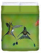 Booted Racket-tail Hummingbird Males Duvet Cover