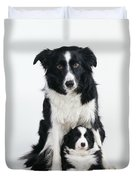 Border Collie Dog & Puppy Duvet Cover