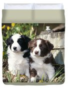 Border Collie Dog, Two Puppies Duvet Cover