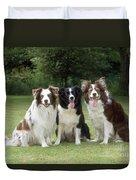 Border Collie Dogs Duvet Cover