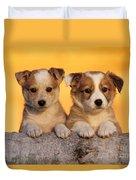 Border Collie Puppies Duvet Cover