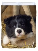 Border Collie Puppy And Wooden Wheel Duvet Cover
