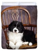 Border Collie Puppy On Chair Duvet Cover