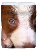 Border Collie Tan And White Pup Duvet Cover
