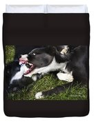Border Collies Playing Duvet Cover