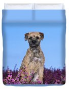 Border Terrier Dog, In Heather Duvet Cover