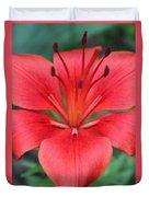 Botanical Beauty 2 Duvet Cover