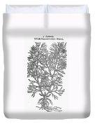 Botany: African Rue, 1597 Duvet Cover
