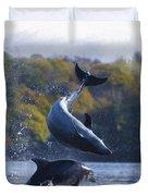 Bottleneck Dolphin Playing Duvet Cover