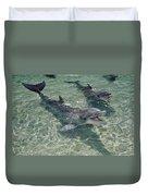 Bottlenose Dolphin In Shallow Lagoon Duvet Cover