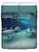 Bottlenose Dolphins In Shallow Water Duvet Cover