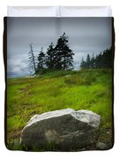 Boulder On The Shore At The Mount Desert Narrows In Maine Duvet Cover