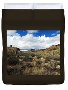 Bowen Homestead Ruins Duvet Cover