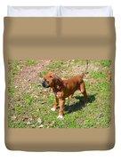 Boxer Puppy 2 Duvet Cover by Maria Urso