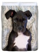 Boxer Puppy Laying In Bed Duvet Cover by Stephanie McDowell