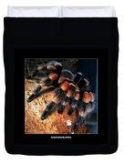 Brachypelma Smithi - Redknee Tarantula Duvet Cover