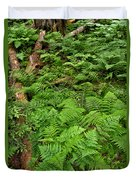 Bracken Duvet Cover