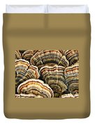 Bracket Fungus 1 Duvet Cover